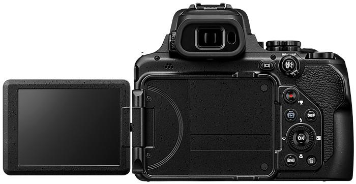 Nikon P1000 photo 2