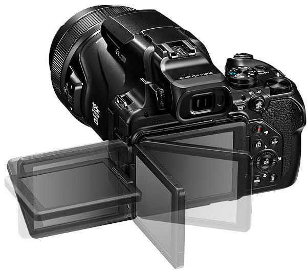 Nikon P1000 photo 4