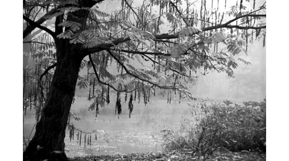 Jesienne mgły...