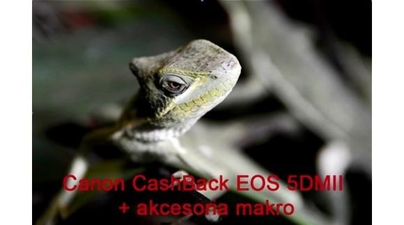 Cashback makro u Canona